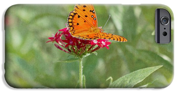 Kim Photographs iPhone Cases - At Rest - Gulf Fritillary Butterfly iPhone Case by Kim Hojnacki