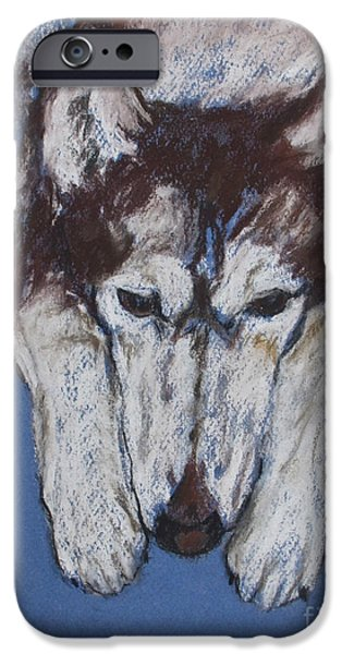 Huskies Pastels iPhone Cases - At Rest II iPhone Case by Cori Solomon