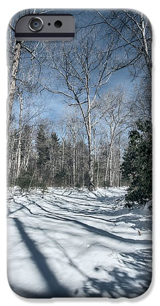 Winter Storm iPhone Cases - At the End of Shope Creek Road iPhone Case by John Haldane