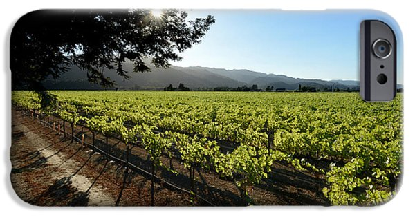 Wine Bottles iPhone Cases - At the Vineyard iPhone Case by Jon Neidert