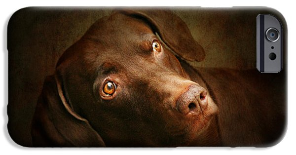 Weimaraner iPhone Cases - Attila the king of dog iPhone Case by Heike Hultsch