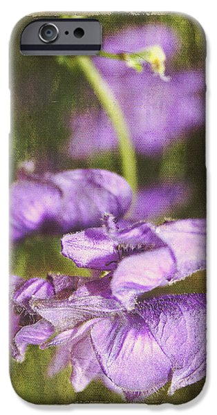 United iPhone Cases - Attraction iPhone Case by Bernadette Tuffs
