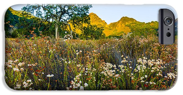 Oak Creek iPhone Cases - August Sunrise in Malibu Creek State Park iPhone Case by Joe Doherty