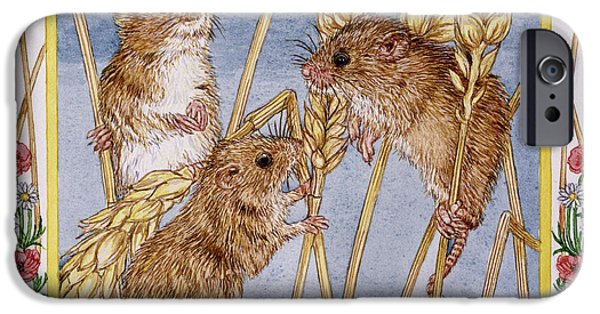 Mouse iPhone Cases - August Wc On Paper iPhone Case by Catherine Bradbury