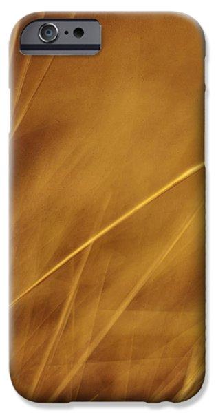 aurum iPhone Case by Priska Wettstein