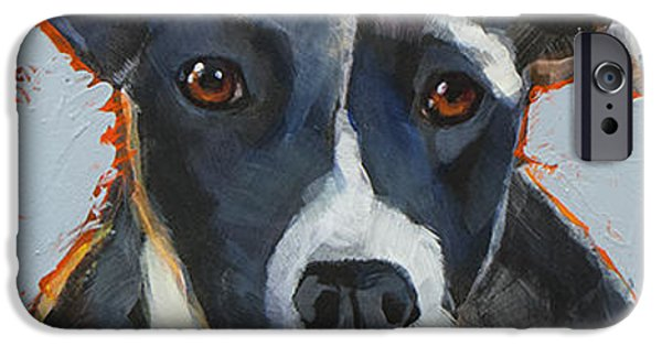 Cattle Dog iPhone Cases - Aussie iPhone Case by Mary Medrano