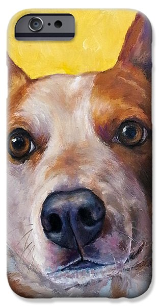 Cattle Dog iPhone Cases - Australian cattle dog red heeler on yellow iPhone Case by Dottie Dracos