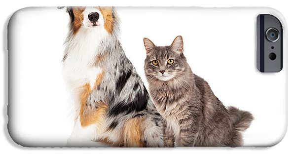 Purebred iPhone Cases - Australian Shepherd Dog and Tabby Cat iPhone Case by Susan  Schmitz