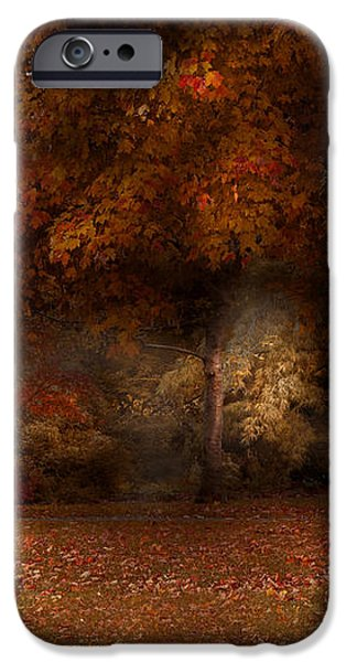 Autumn - A park bench iPhone Case by Mike Savad