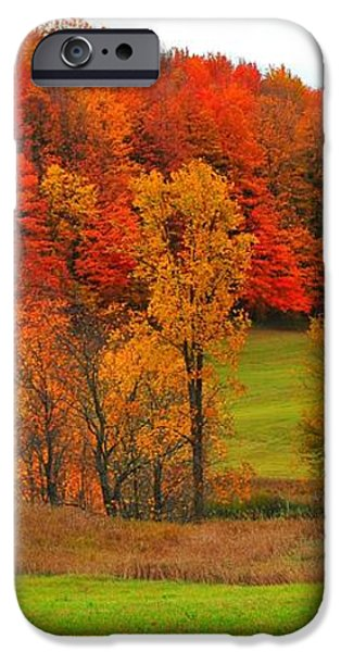 Autumn Abandoned iPhone Case by Terri Gostola