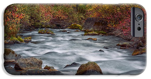 Overcast Day iPhone Cases - Autumn along Palisades Creek in Idaho iPhone Case by Vishwanath Bhat