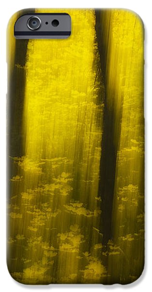 Autumn Apparitions iPhone Case by Peter Coskun