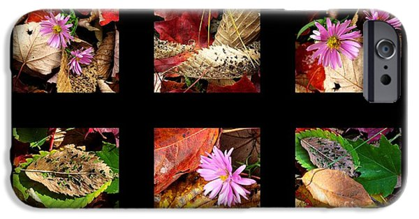 Autumn iPhone Cases - Autumn art 17 iPhone Case by France Laliberte