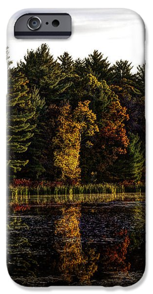 Autumn At It's Finest 2 iPhone Case by Thomas Young