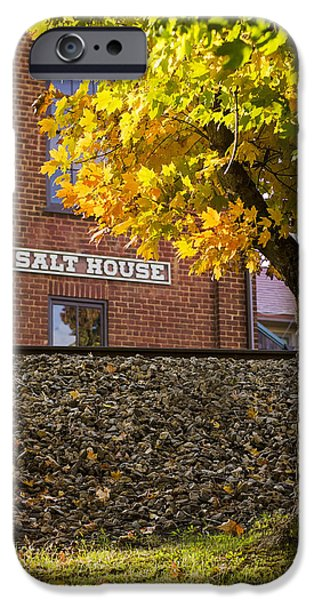 Turning Leaves iPhone Cases - Autumn at the Salt House iPhone Case by Heather Applegate
