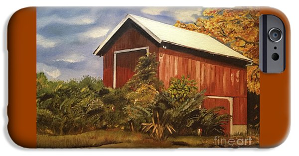 Old Barns iPhone Cases - Autumn - Barn - Ohio iPhone Case by Jan Dappen