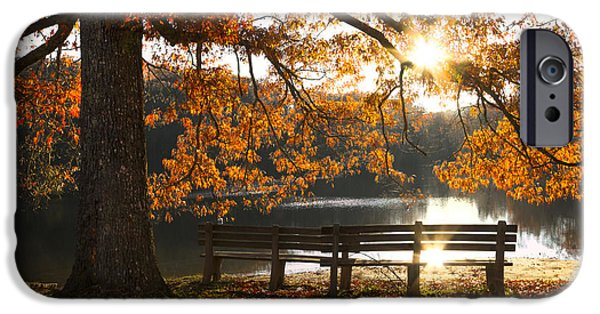 Park Scene iPhone Cases - Autumn Beauty iPhone Case by Debra and Dave Vanderlaan