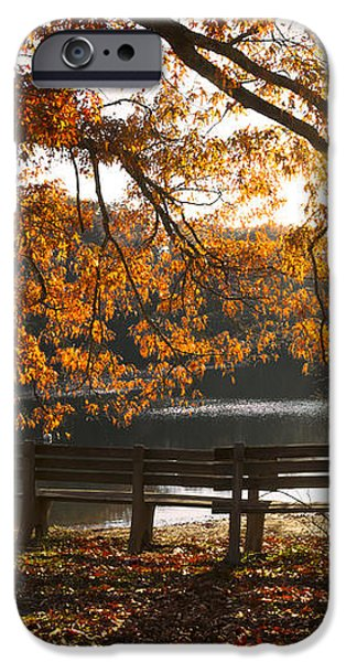 Autumn Beauty iPhone Case by Debra and Dave Vanderlaan