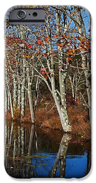 Autumn Blue iPhone Case by Karol  Livote