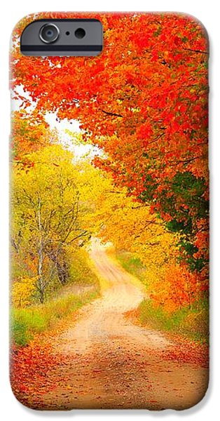 Autumn Cameo 2 iPhone Case by Terri Gostola