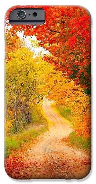 Autumn Cameo Road iPhone Case by Terri Gostola