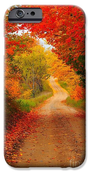 Autumn Cameo iPhone Case by Terri Gostola