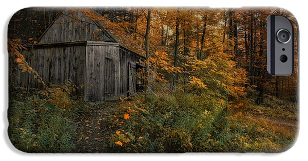 Recently Sold -  - Shed iPhone Cases - Autumn Canopy iPhone Case by Robin-lee Vieira