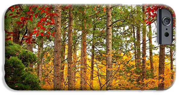 Red And Yellow iPhone Cases - Autumn Canvas iPhone Case by Carol Groenen