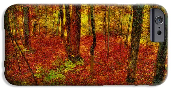 Surreal Landscape iPhone Cases - Autumn Carpet iPhone Case by David Patterson