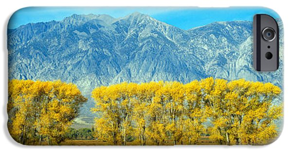 Mountain iPhone Cases - Autumn Color Along Highway 395, Sierra iPhone Case by Panoramic Images