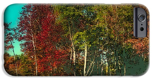 Surreal Landscape iPhone Cases - Autumn Color in the Adirondack Mountains iPhone Case by David Patterson