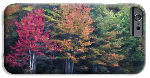 Fall iPhone Cases - Autumn Color Painterly Effect iPhone Case by Carol Leigh