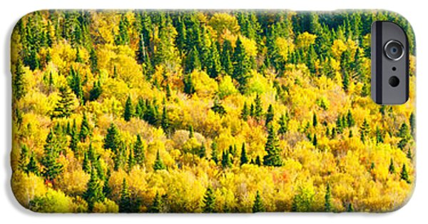 Autumn iPhone Cases - Autumn Colors At Appalachian Mountains iPhone Case by Panoramic Images