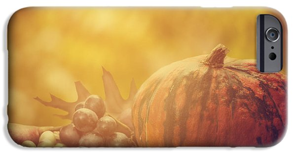 Gourd iPhone Cases - Autumn Concept iPhone Case by Jelena Jovanovic