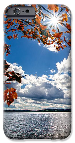 Corporate Art Photographs iPhone Cases - Autumn  Confidential  iPhone Case by Bob Orsillo