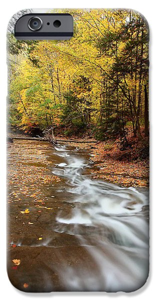 Creek Pyrography iPhone Cases - Autumn Creek iPhone Case by Daniel Behm