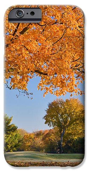 Autumn Dawn iPhone Case by Brian Jannsen