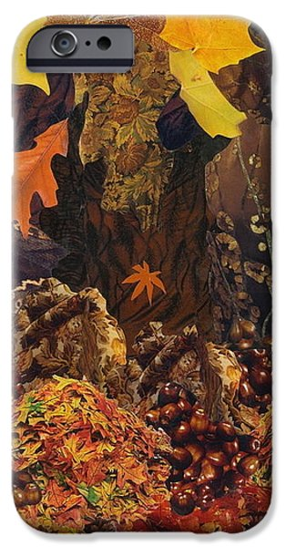 Autumn iPhone Case by Denise Mazzocco