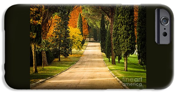 Tuscan Road iPhone Cases - Autumn Drive iPhone Case by Prints of Italy