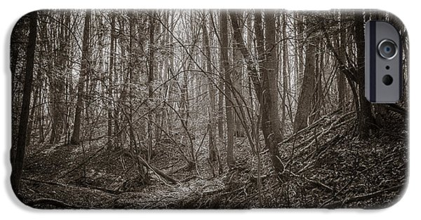Oak Creek iPhone Cases - Autumn Dry Creek BW iPhone Case by Chris Bordeleau