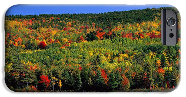 Autumn iPhone Cases - Autumn Eagle Lake, Acadia National iPhone Case by Panoramic Images