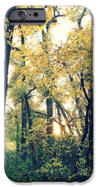 Autumn Evening iPhone Case by Jessica Myscofski
