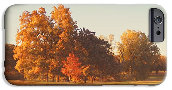 Autumn Scenes iPhone Cases - Autumn Evening on the Golf Course iPhone Case by Ann Powell
