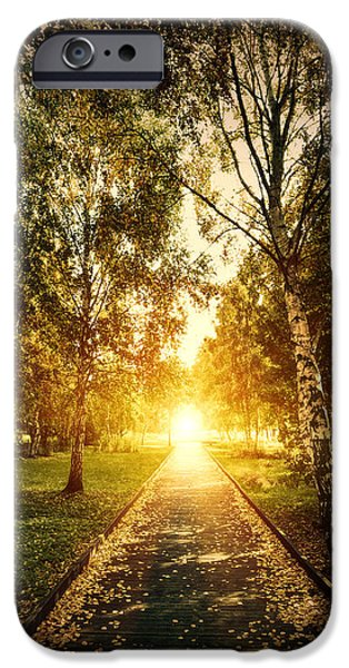 Autumn fall park iPhone Case by Michal Bednarek