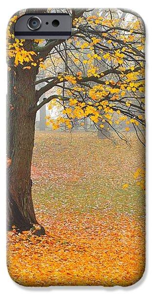 Autumn Fallen iPhone Case by Terri Gostola