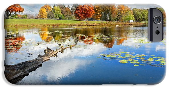 Lilly Pads iPhone Cases - Autumn Farm Pond iPhone Case by Bill  Wakeley