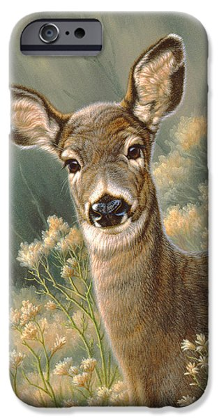 Fawn iPhone Cases - Autumn Fawn-Blacktail iPhone Case by Paul Krapf