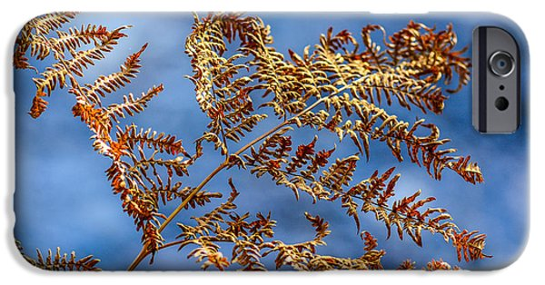 Flora Mixed Media iPhone Cases - Autumn Fern iPhone Case by Toppart Sweden