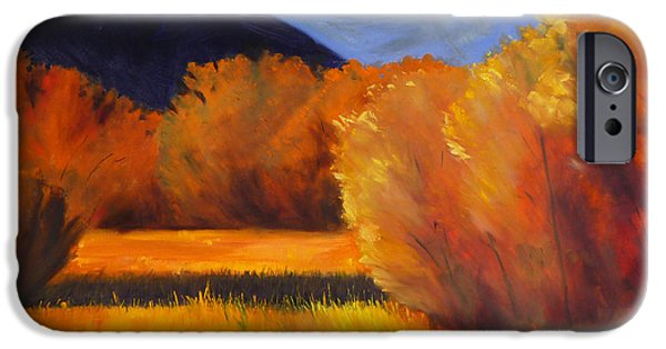 Autumn iPhone Cases - Autumn Field iPhone Case by Nancy Merkle