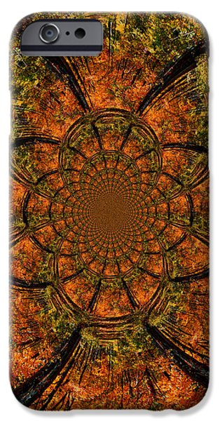 Nature Scene iPhone Cases - Autumn Forest iPhone Case by Dan Sproul